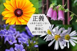 Justice-Seigi-Flowers