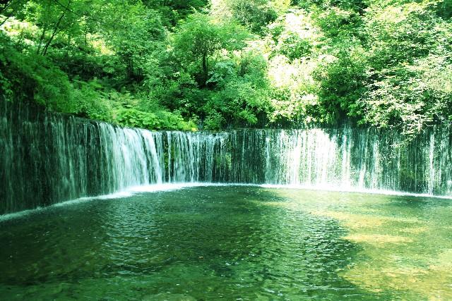 美しい自然の流れのように 真実に還る